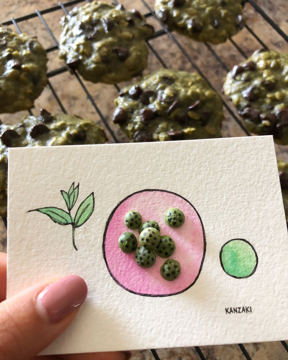 Green split lentils were the matcha-chocolate chip cookie inspiration for today's #the100dayproject. #day28of100 #100daysofTheKanzakiMethodFood