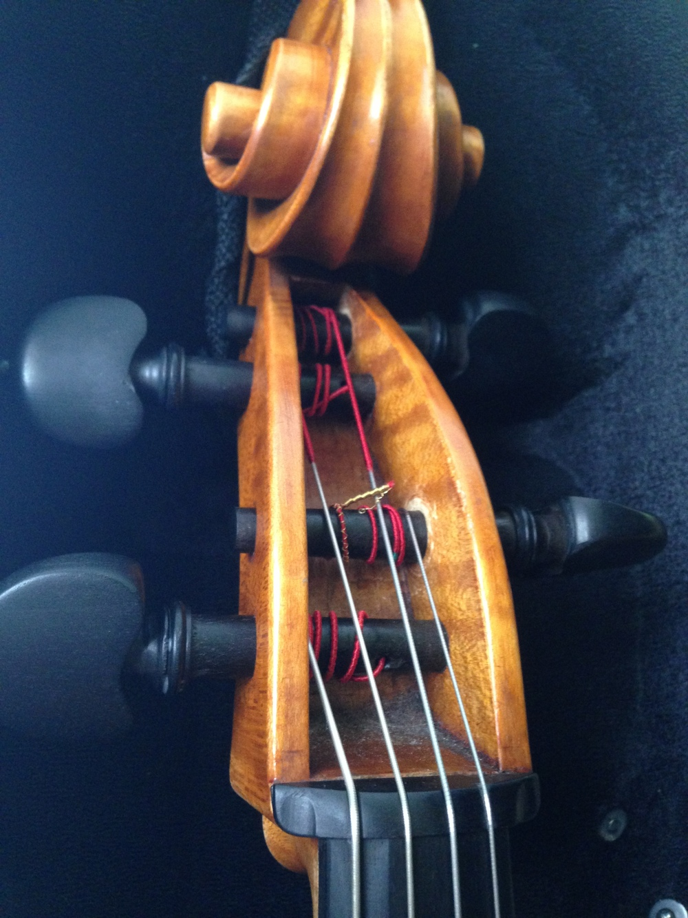 Michelle Kinney's cello