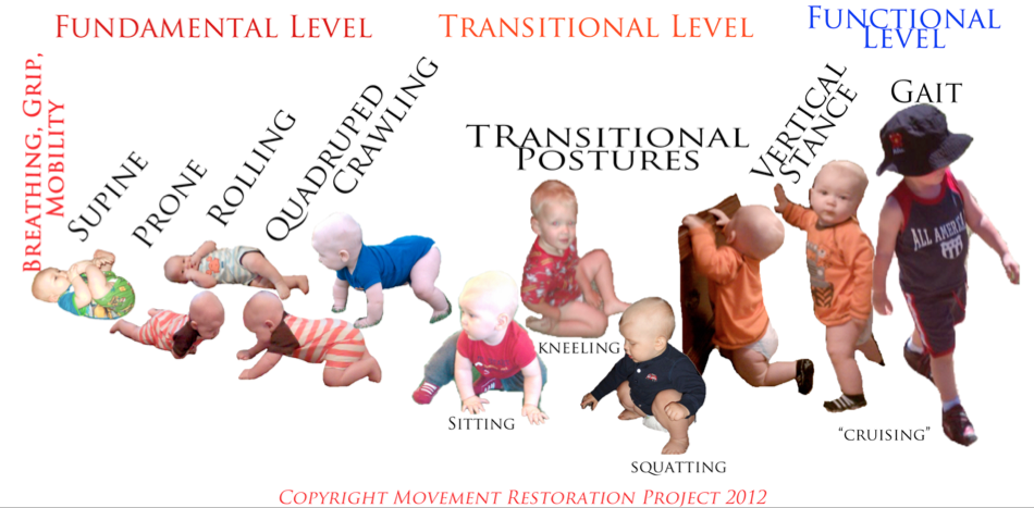 This is how we progress through our developmental stages of motor learning.