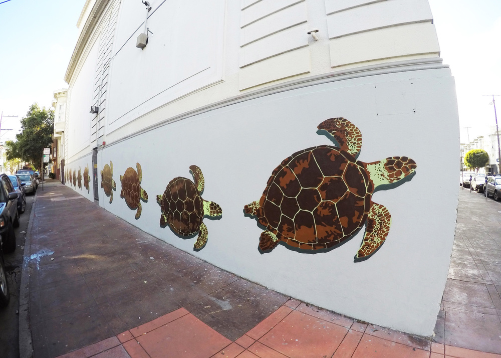Sea Turtle Wall Facebook.jpg