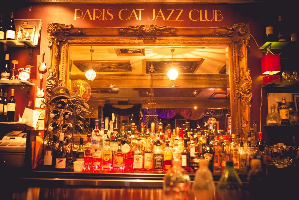 Image result for paris cat