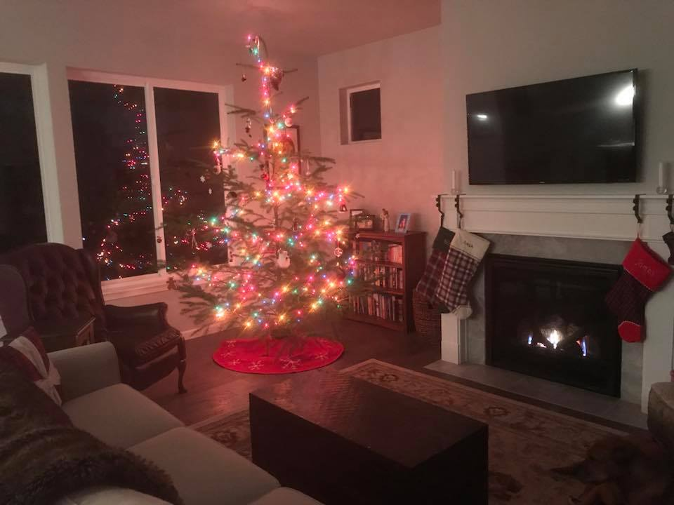 Cozy and Christmas-y! The only picture of our tree, haha