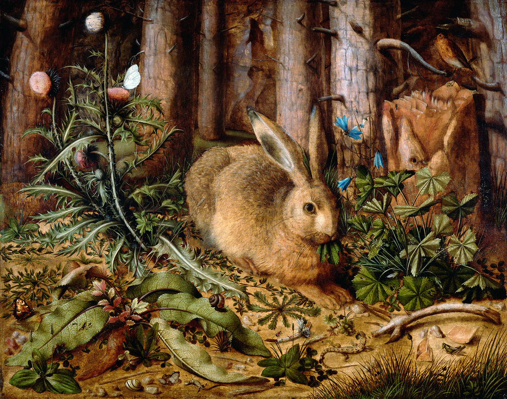 A Hare in the Forest , Hans Hoffmann, German, about 1585