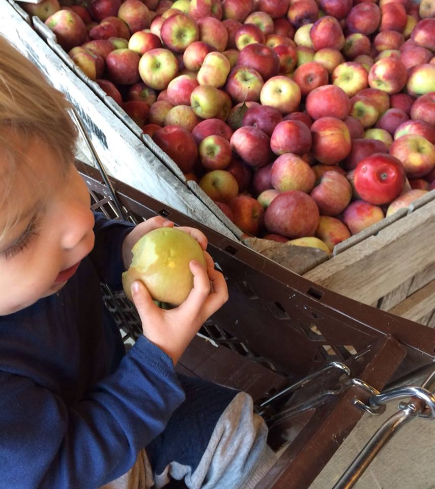 November 9, 2015  ·    Choosing locally grown apples with my main squeeze. This kid won't see a strawberry until spring. And he won't even miss it.  #eatlocal