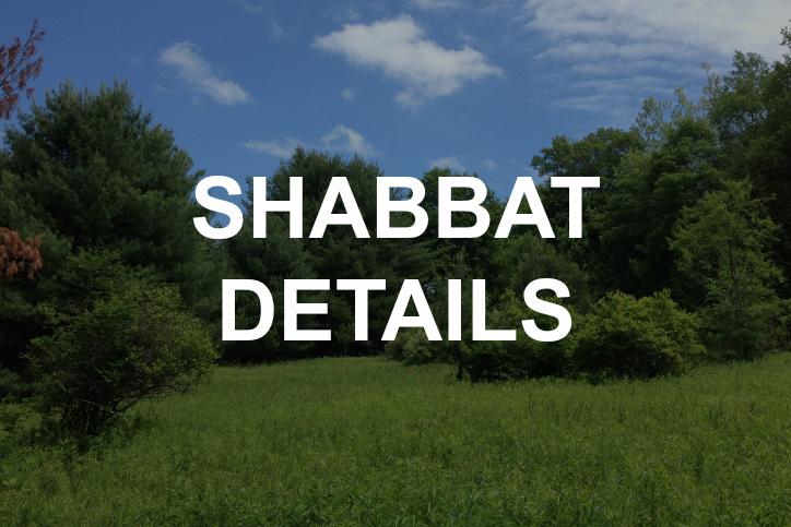SHABBAT DETAILS.jpg