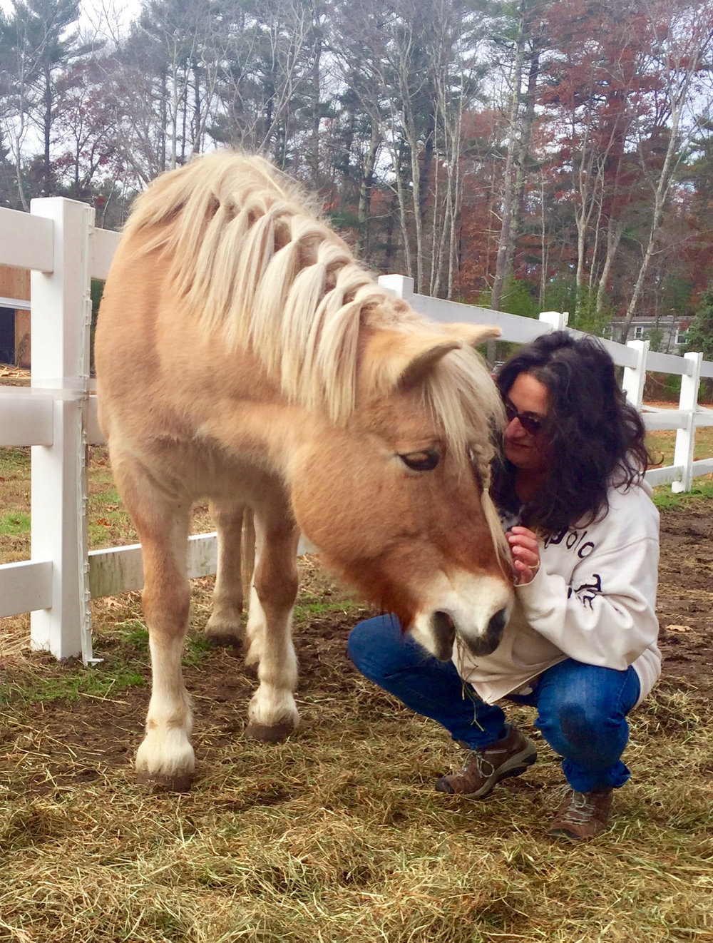 Animal Communication - It's easier than you think. - When I ask an animal a question, I receive their answer in the form of images, feelings, words, thoughts and emotions. For example, if I were to ask an animal what part of their body was not feeling well, I may feel pain in an area of my body that corresponds to theirs. The animal may also send me a picture of the area. I am the conduit for the voice of the animal to communicate to its owner. I work with all animals. It is a sacred experience filled with love, respect and compassion. It is my job as an Animal Communicator to relay the messages between the animal and owner as accurately as possible, bringing enlightened understanding between both parties.I am not a Veterinarian and do not diagnose illness. I can describe the symptoms the animal feels which can be used to assist your Veterinarian and or Chiropractor.Why use an Animal Communicator?To find out the reason behind undesirable behavior.To inquire about how their body feels, where they are sore. This can be used to assist your Veterinarian.(Animal Communicators are never a replacement for Veterinary care, only a complement).To find out if they like their food, bed, saddle, blanket, barn, kennel, sitter, trainer, showing, agility, etc.To find out if the horse/dog you want to buy enjoys the type of riding/competing/lifestyle you desire.To ask if your animal would be accepting of an animal companion.