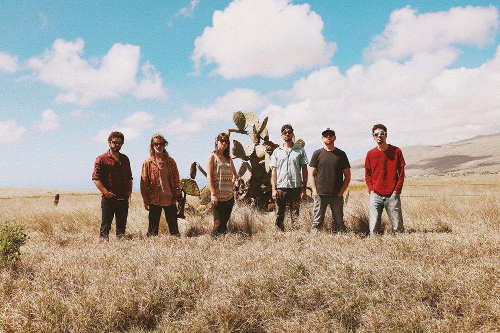band cactus.jpeg