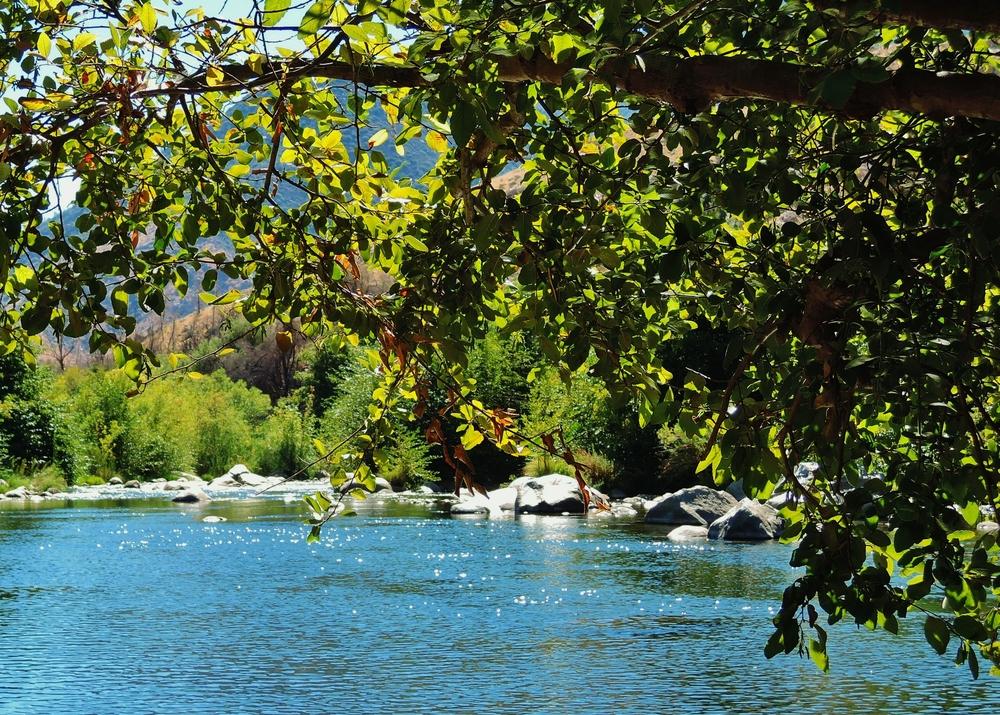kern river.jpg