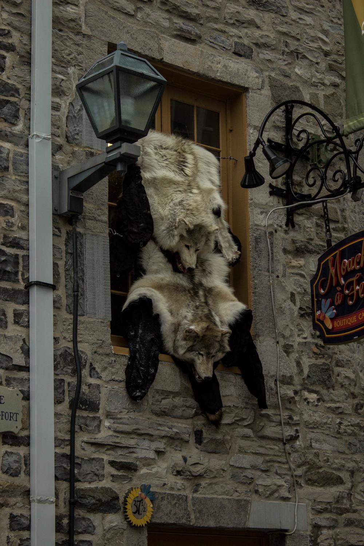 Quebec_140315_0073.jpg