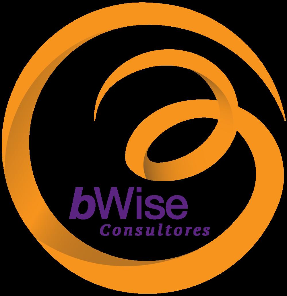 LogoBWise_web-01.png