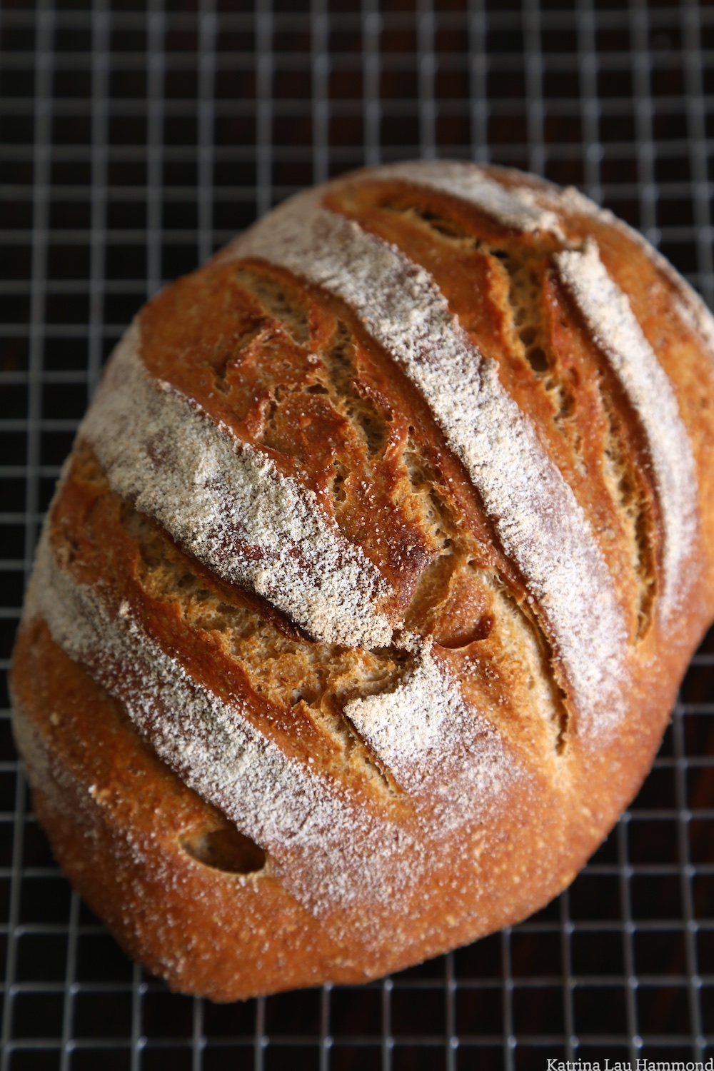 European_peasant_loaf_002_KLH.jpg