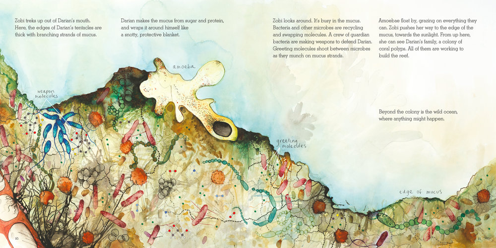 Selected pages from  Zobi and the Zoox . Written by Ailsa Wild, illustrated by Aviva Reed, created by Briony Barr & Dr. Gregory Crocetti. Published by Scale Free Network in 2015.