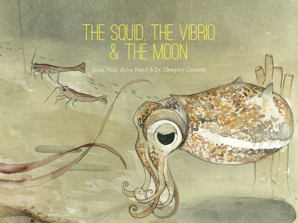 Copy of Cover of The Squid, the Vibrio & the Moon. Written by Ailsa Wild, Illustrated by Aviva Reed and Created by Dr. Gregory Crocetti. Published by Scale Free Network, 2014.