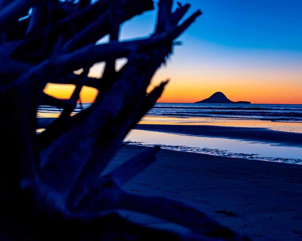 Winter-Sunset-&-Moutohora------Small.jpg