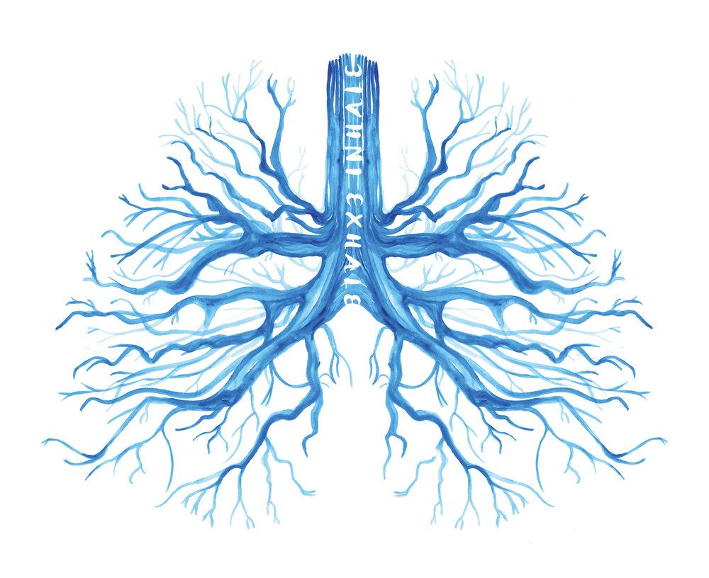 Inhale_roots lungs.jpg