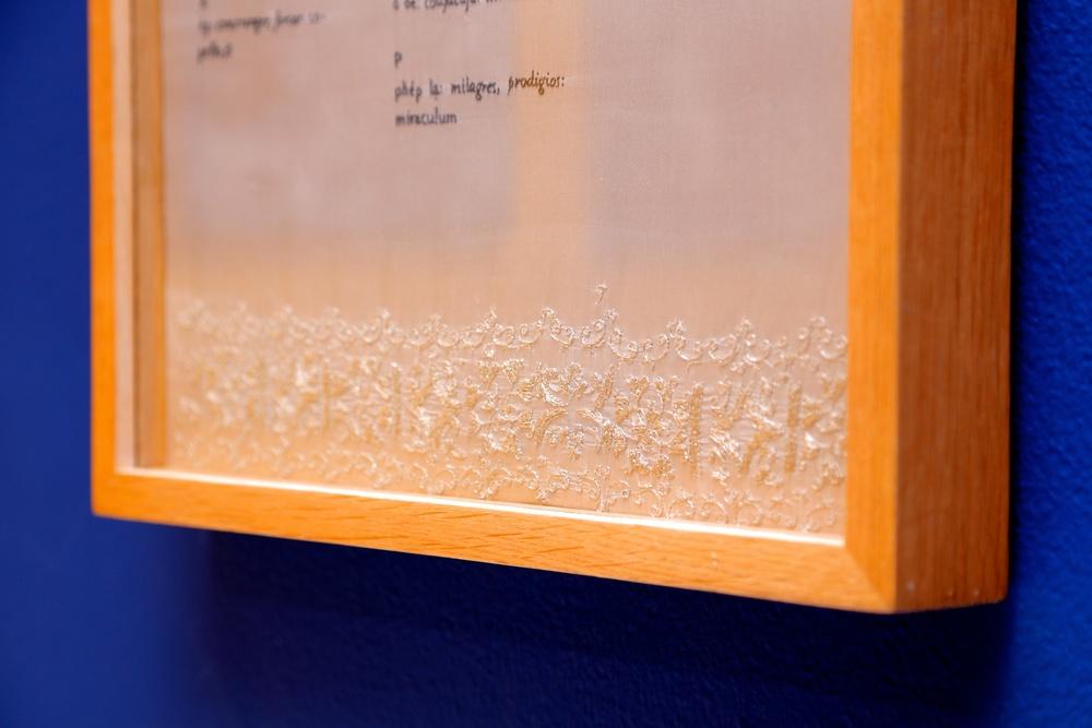 Thao-Nguyen Phan   'The Alphabet' (detail), 2014    Hand embroidery: silk, silk thread, wood    40 x 60cm, ed.3 + 1AP