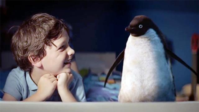 monty-the-penguin