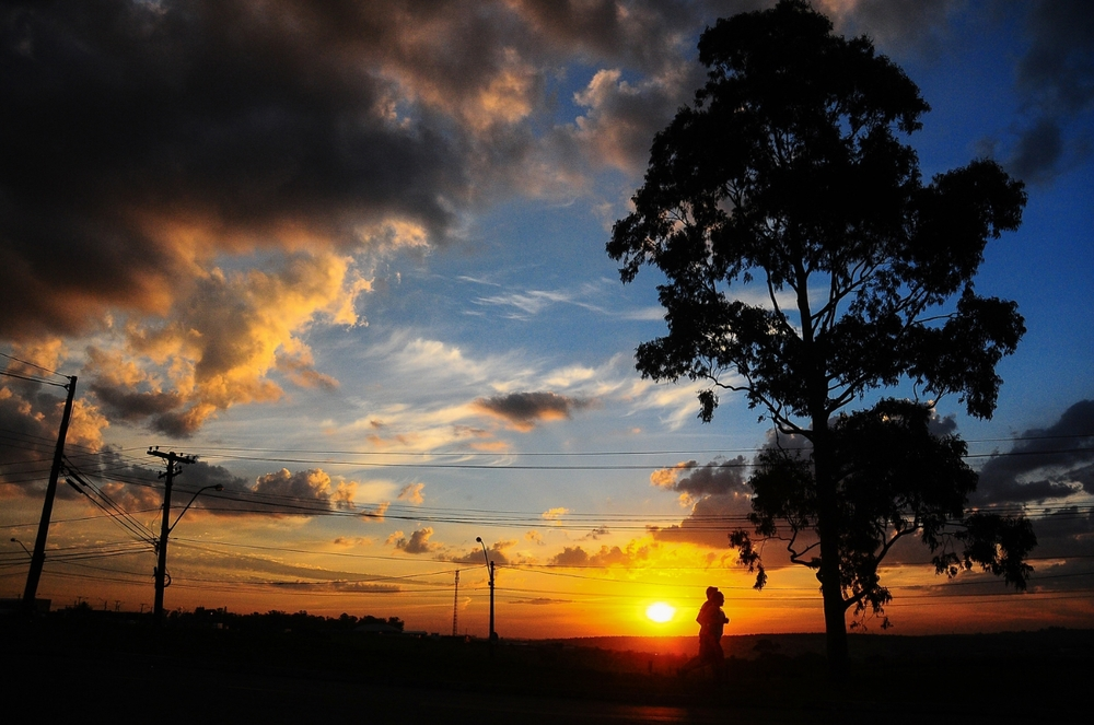 Autumn dry weather; Brazil. ©Erica Dezonne / All rights reserved