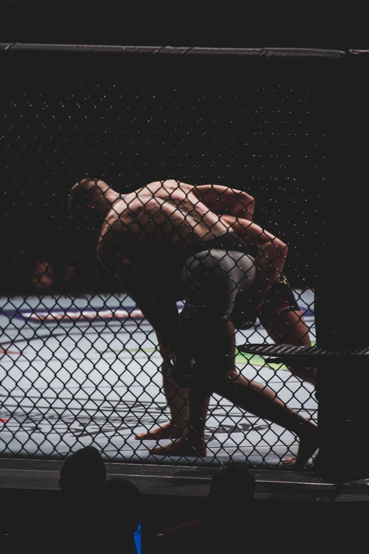 UFC 205-21.jpg