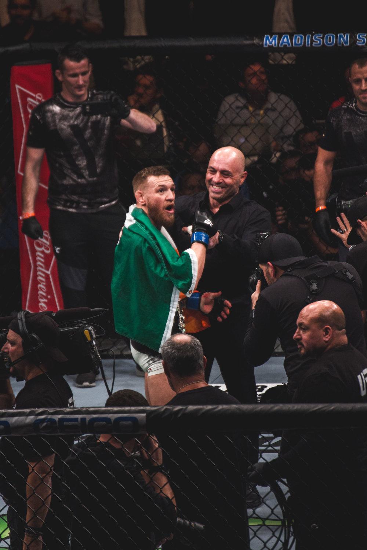 UFC 205-23.jpg