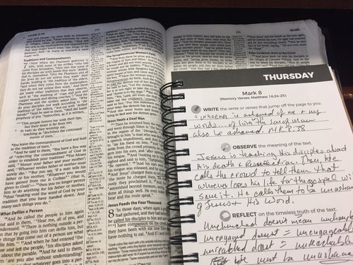 Journal Through the Word.jpg