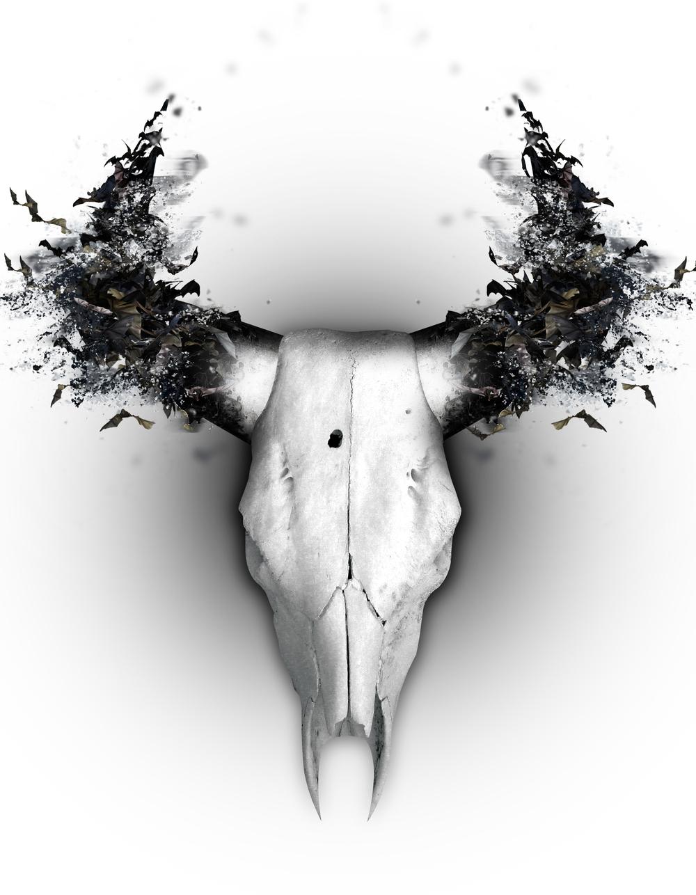 Dracula Skull Design (White).jpg