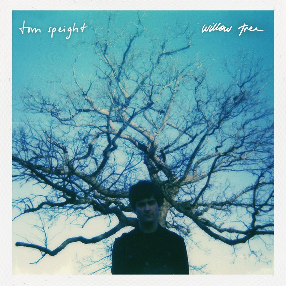 Tom Speight - Willow Tree
