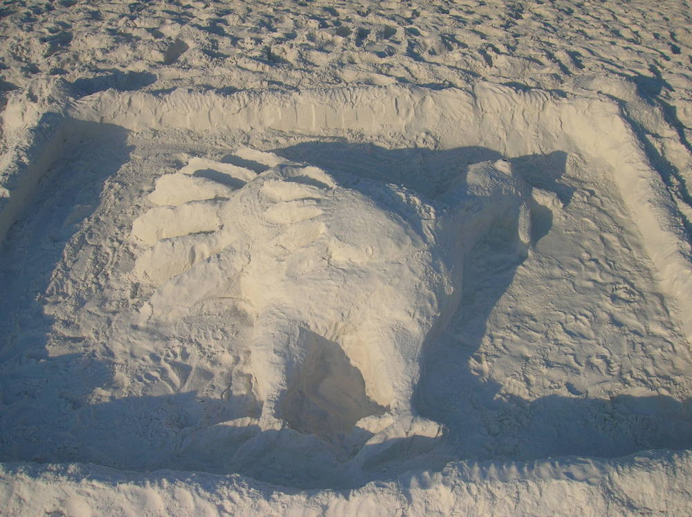 Not a Sand-Castle...but a Sand-TURKEY!