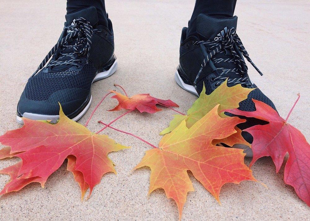 fall-2854257_1920.jpg
