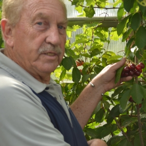 Dr. Ieuan Evans from Alberta, growing fruit on the Canadian Prairies
