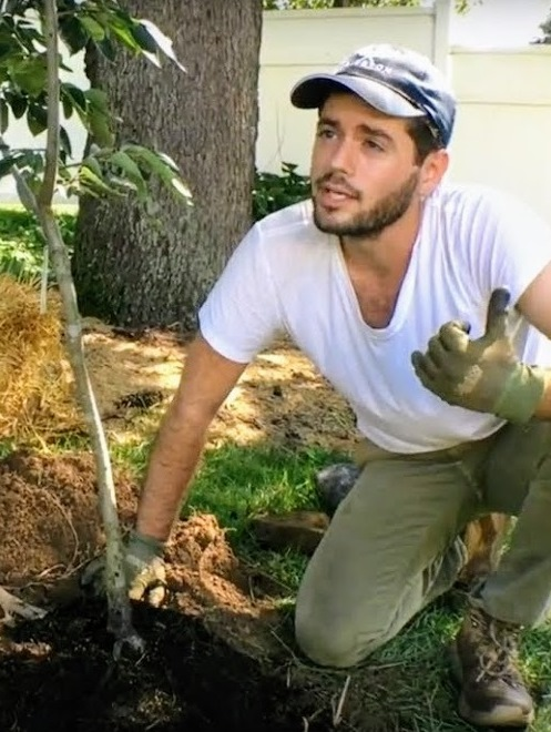 Ross Raddi , urban orchardist and fig expert