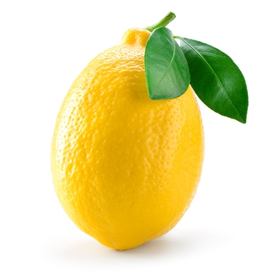 Lemons in Cold Climates - There are many options for overwintering lemon trees in cold climates because they tolerate more cold than many people realize.