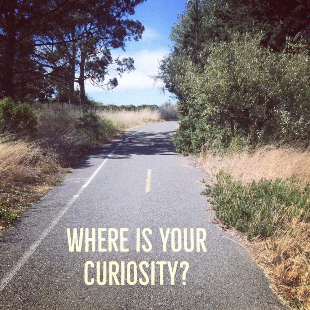 Where is Your Curiosity?
