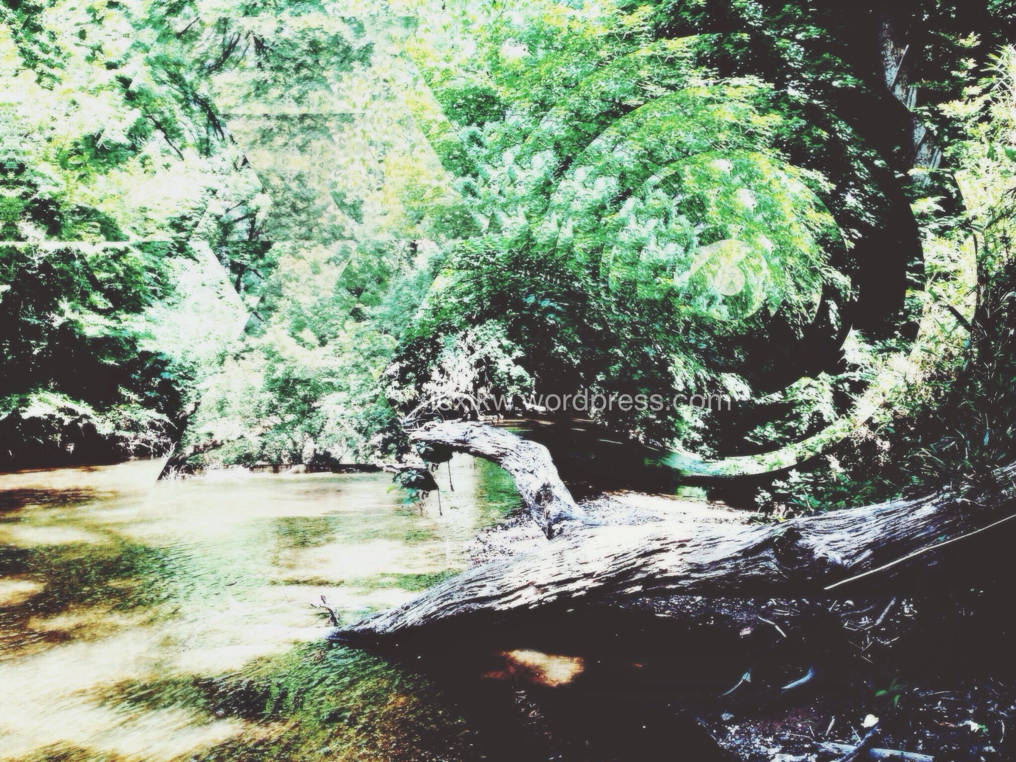 Little Cahaba River