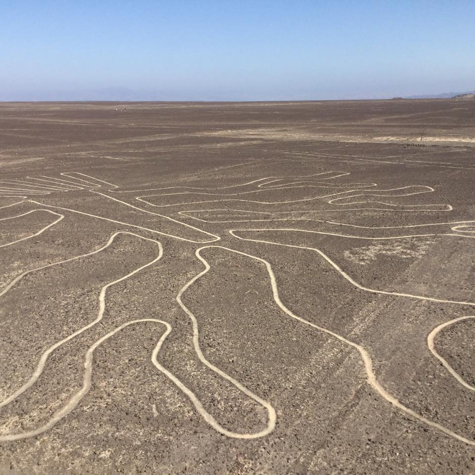 You may also be interested on our land tour to the Nazca lines  - PRICE FROM 30 USD DURATION 3 HOURSINCLUDES 3 LOOKOUTS AND MARIA REICHE HOUSE MUSEUM .