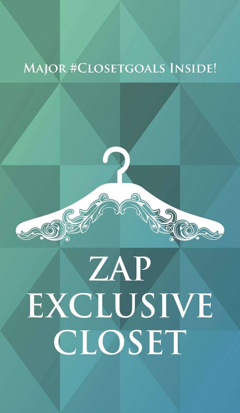 Zap Closet Banner-01 (1).jpg
