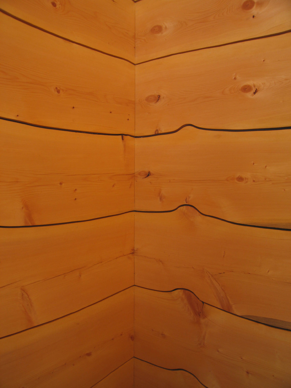architectural_vestibule_paneling.jpg