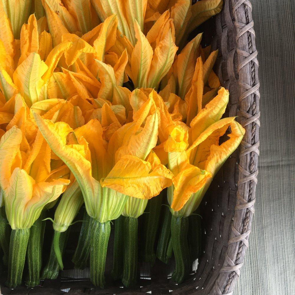 ZUCC FLOWERS.jpg