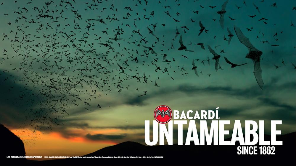 Bacardi_cover image.jpg