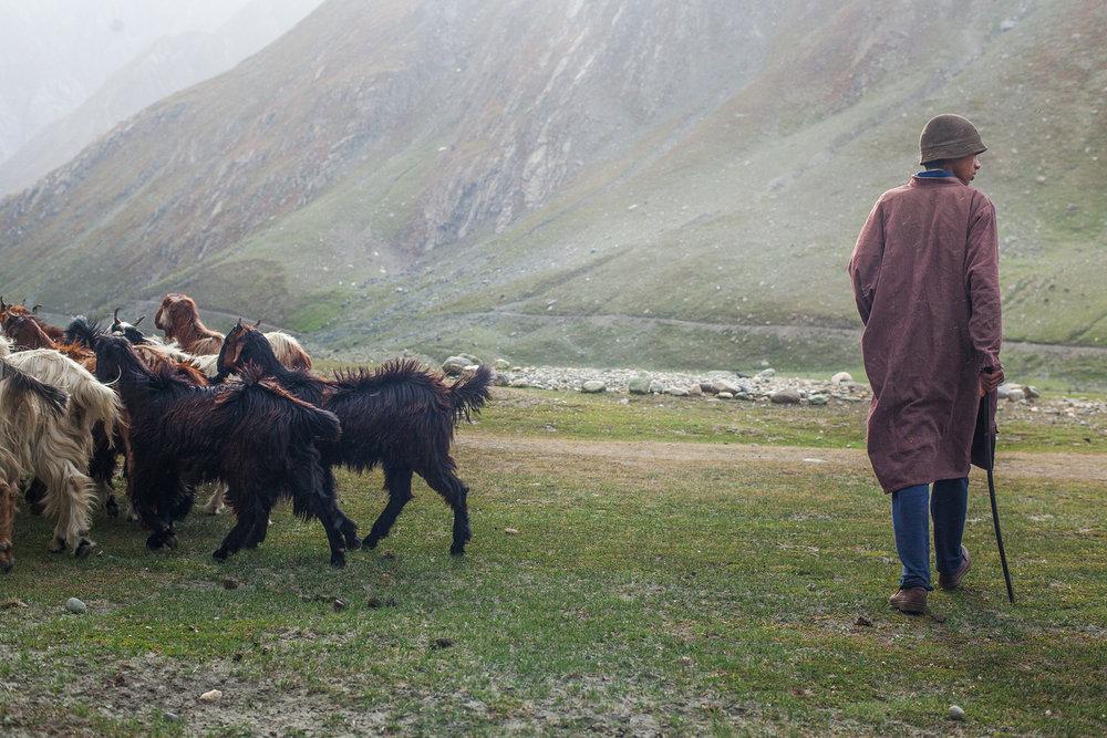 50-Ozzie-Hoppe-Photographer-India-Himalaya.jpg