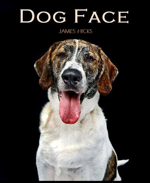 DOG FACE: Pooches & Prose is a coffee table book of strikingly beautiful photographs of dogs, combined with wonderful and witty quotes by notables and the not so well known. James has been a photographer for well over 20 years and has been a dog lover all of his life.  Combining his love of photography and dogs, James is working to create DOG FACE : Pooches & Prose. He has photographed mixed, popular & rare pure breeds , as well as, show dogs and pets. All of the subjects have been loving companions and family members. The images are not only stunning and dramatic portraits but also captured are dogs just having a good time being dogs.  View the project HERE