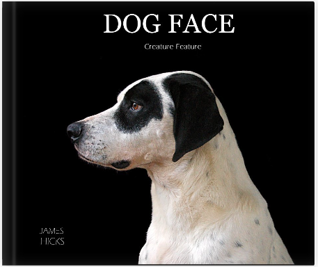 Dog Face: Creature Feature is a compilation of beautiful images of the different animals I photographed in the making of Dog Face: The Human Animal Bond.