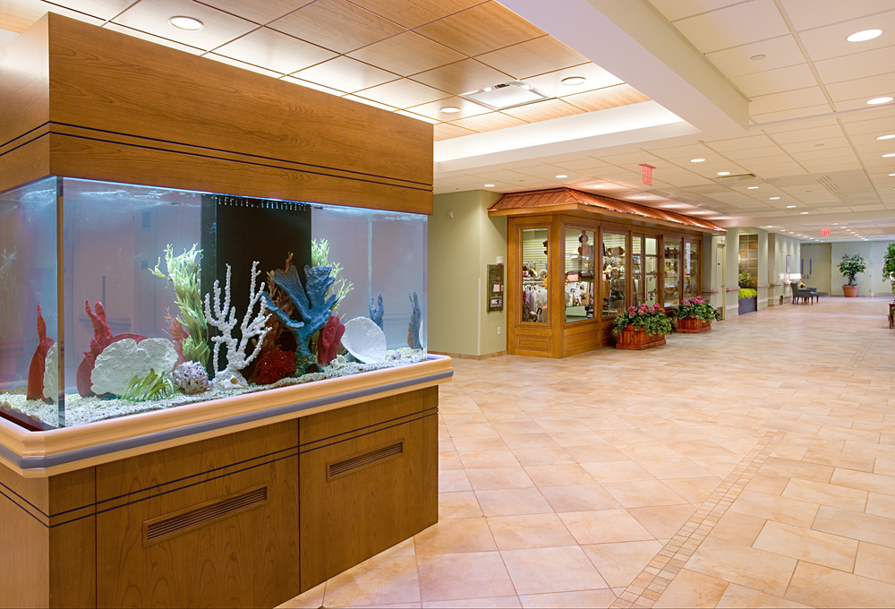 Parker Jewish Institute. Tobin Parnes Design. NY. Healthcare Design. Lobby.