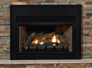 fireplaceinsert_pic.png