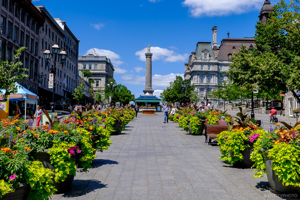 Place Jacques-Cartier Old Montreal OLNEY Photographe Sherbrooke