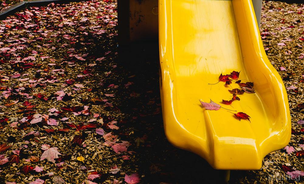 Glissoire jaune et feuilles d'automne à Sherbrooke photographie de rue olney photographe