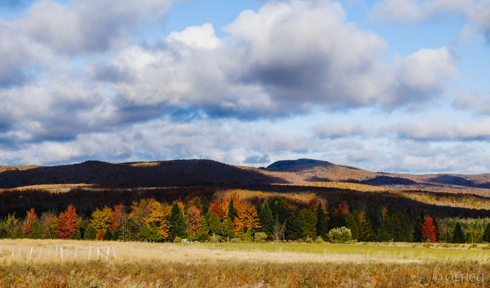Collines colorées par l'automne à Orford QC olney photographe sherbrooke