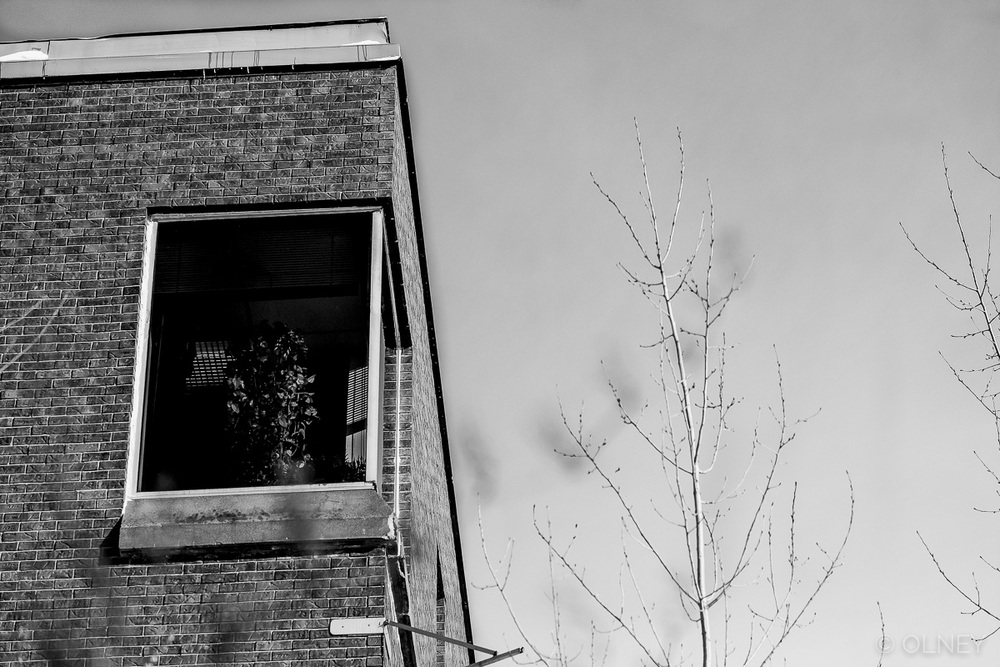 Building and sky in winter in black and white olney photographe sherbrooke