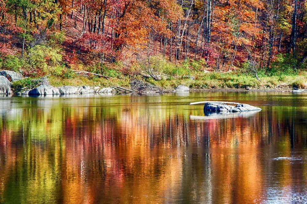 Rivière Saint-François en automne à Sherbrooke QC par OLNEY Photographe