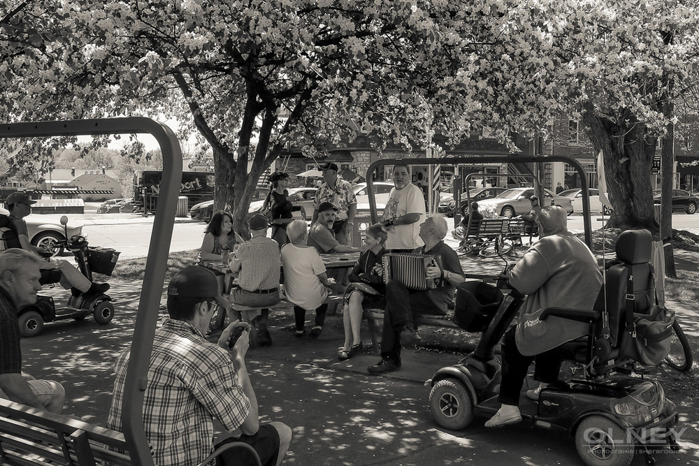 Gathering in central park Magog QC street photography olney photographe sherbrooke